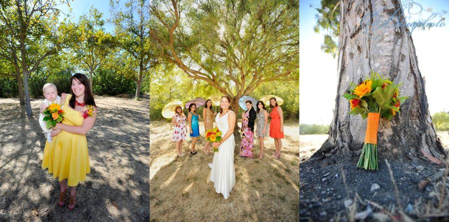 wedding photographers paso robles