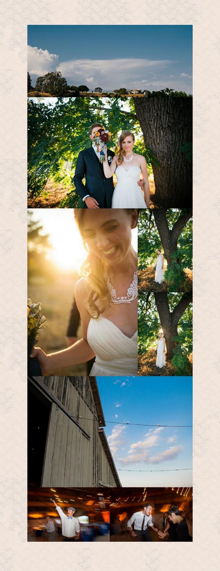 san luis obispo wedding photographer barn photo weddings