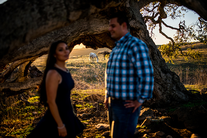 san luis obispo wedding and engagement pictures