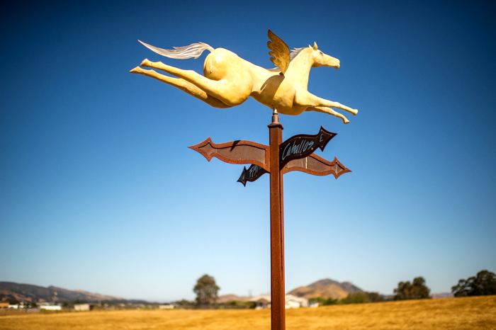 20160625-Roccio-and-Javier-Flying-Caballos-Ranch-Wedding-Photography-2222 copy