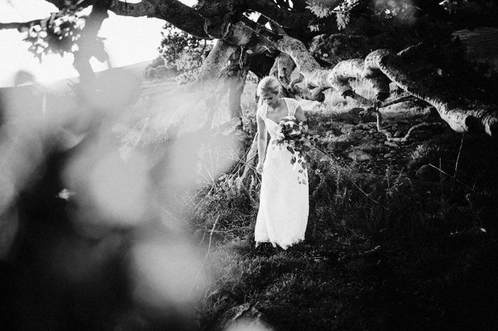 20170325-Emily-and-Will-San-Luis-Obispo-Wedding-Photography-4513 copy